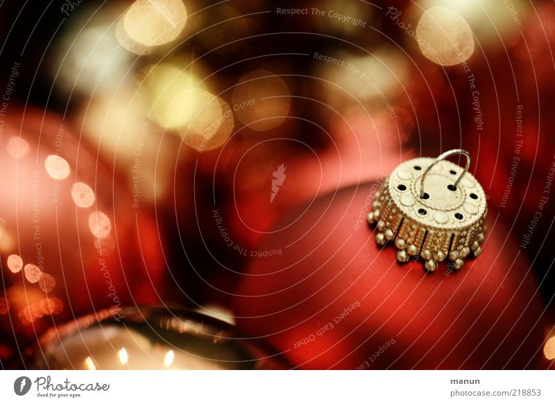 Christmas & Advent Red Emotions Lifestyle Feasts & Celebrations Moody Glittering Decoration Gold Happiness Sign Round Kitsch Desire Tradition Sphere