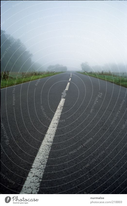 Calm Loneliness Far-off places Street Freedom Lanes & trails Landscape Line Going Fog Environment Horizon Empty Authentic Climate Thin