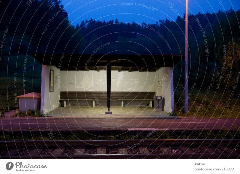 Tree Loneliness Dark Wall (building) Wall (barrier) Gloomy Bench Railroad tracks Train station Surrealism Night Platform Lamp post Style Light Shelter