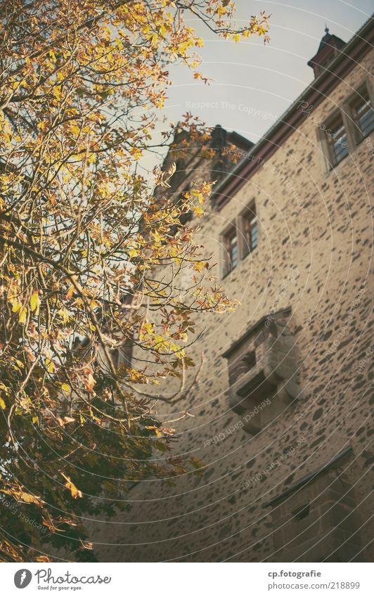 Nature Tree Plant Autumn Building Castle Manmade structures Beautiful weather Tourist Attraction