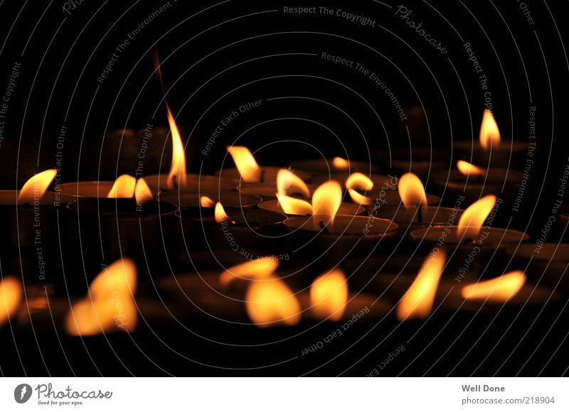 Sea of Lights Candle Warmth Tea warmer candle Flame Colour photo Interior shot Close-up Day Shadow Contrast Light (Natural Phenomenon) Candlelight Many Multiple