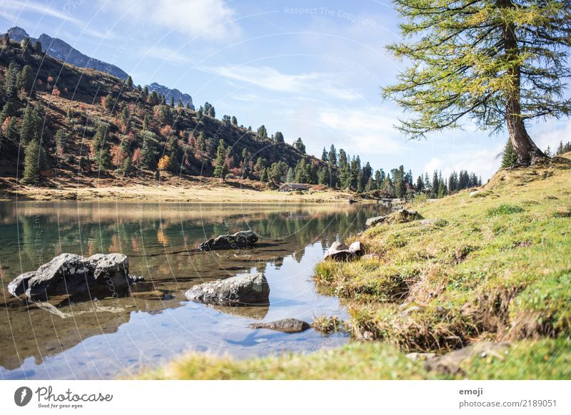 Lake Engstlen Relaxation Vacation & Travel Tourism Summer Mountain Hiking Environment Nature Landscape Sky Beautiful weather Alps Exceptional Mountain lake