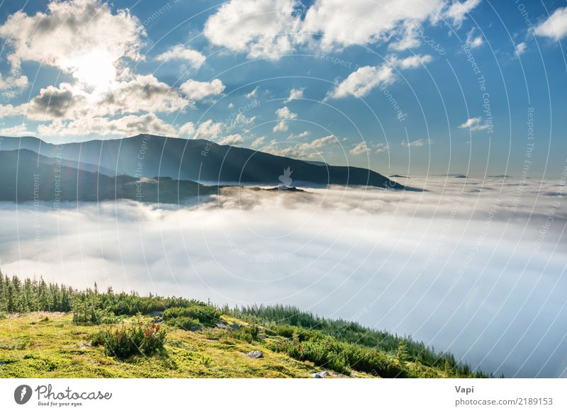 Green mountains in the clouds Beautiful Vacation & Travel Tourism Adventure Far-off places Summer Sun Mountain Hiking Environment Nature Landscape Earth Air Sky