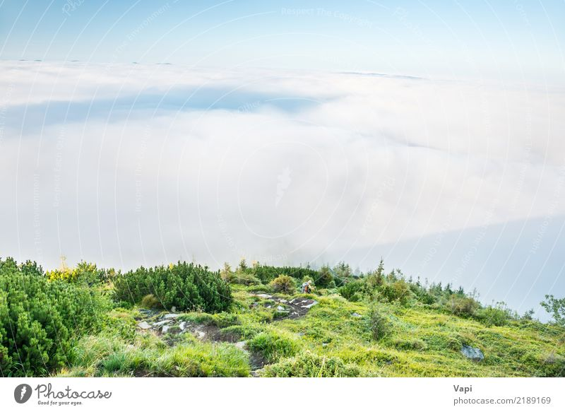 Landscape view on green hills in fog at sunset Lifestyle Leisure and hobbies Vacation & Travel Tourism Trip Adventure Summer Mountain Hiking Human being Woman