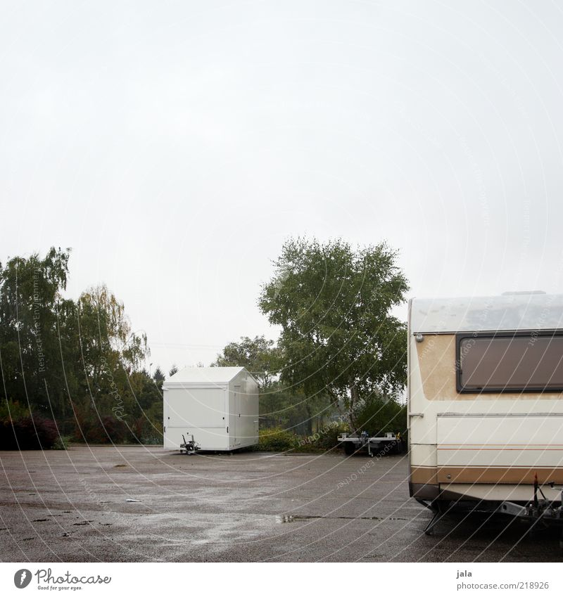 Sky White Green Tree Plant Calm Loneliness Gray Wet Places Empty Gloomy Bushes Parking lot Bad weather Caravan