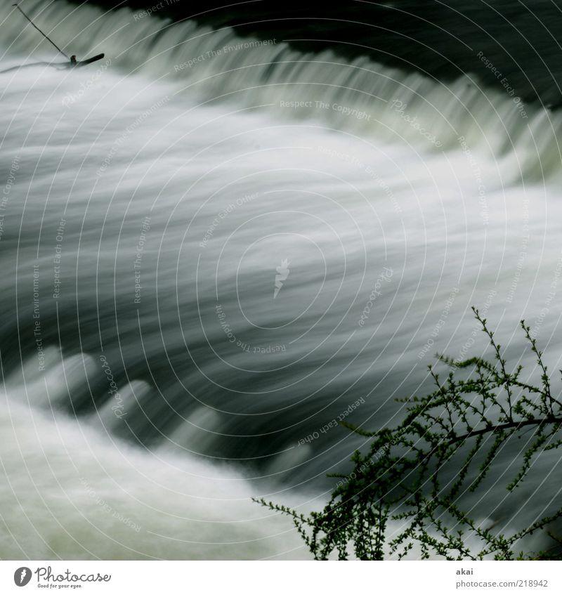 Water Emotions Gray Moody Environment Drops of water 3 River Brook River bank Waterfall Environmental protection Freiburg im Breisgau Long exposure