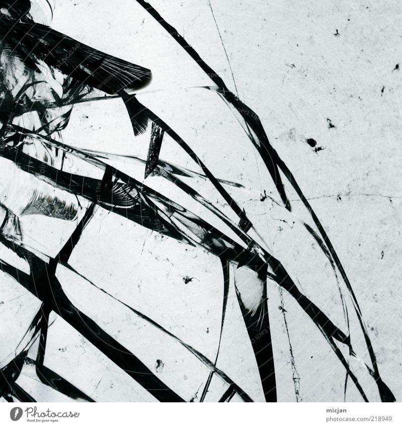 Beautiful Black Line Glass Broken Protection Force Art Broken Material Window Crack & Rip & Tear To break (something) Destruction Fragile Arch