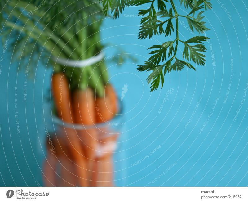 Green Blue Leaf Nutrition Healthy Glass Food Vegetable Delicious Diet Organic produce Carrot Bundle Foliage plant