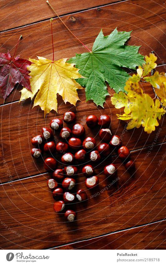 #AS# Autumn table Art Work of art Esthetic Chestnut tree Chestnut leaf Autumnal Autumn leaves Autumnal colours Automn wood Autumn wind Table Leaf Colour photo