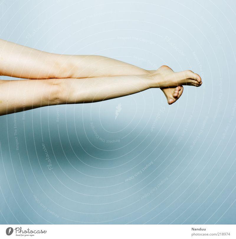 fine legs Elegant Human being Feminine Legs 1 Thin Beautiful Alluring Woman's leg Knee Feet Neutral Background Colour photo Subdued colour Studio shot