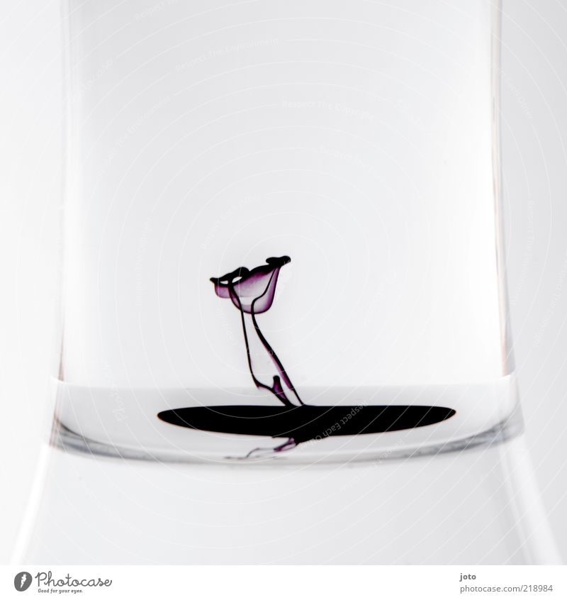 Water Flower Plant Calm Style Blossom Dye Art Glass Design Elegant Modern Esthetic Abstract Growth Drop