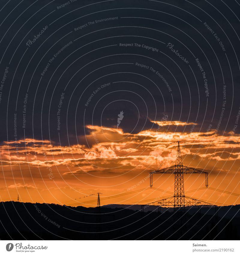 Strommasten im Sonnenuntergang Elektrizität wolken hell leuchten Schatten Silhouette Rot Farbe Himmel Natur