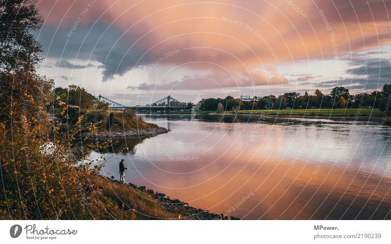 angler hotspot Environment Sky Beautiful weather Gale Bridge Adventure Dusk Angler Fishing (Angle) Elbe Cloud formation River bank Autumn Reflection Water