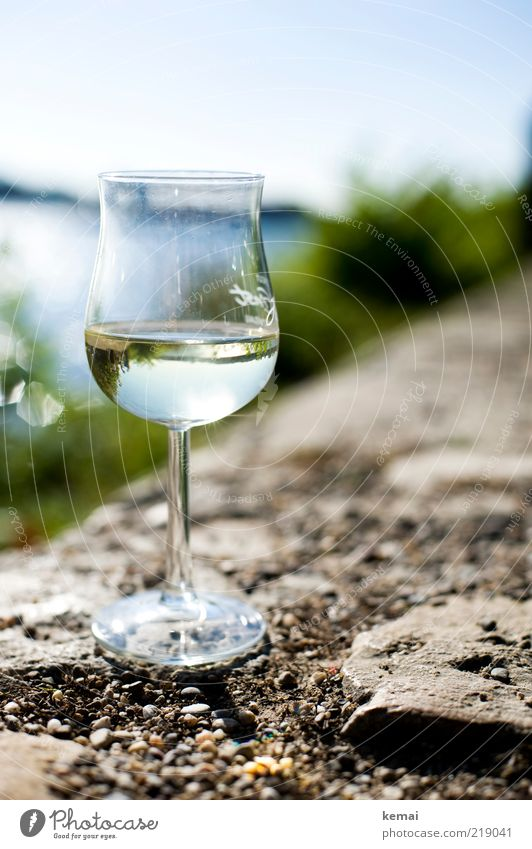 A glass of Riesling (II) Beverage Alcoholic drinks Wine White wine Glass Wine glass Whitewine glass Lifestyle Style Well-being Contentment Relaxation Summer
