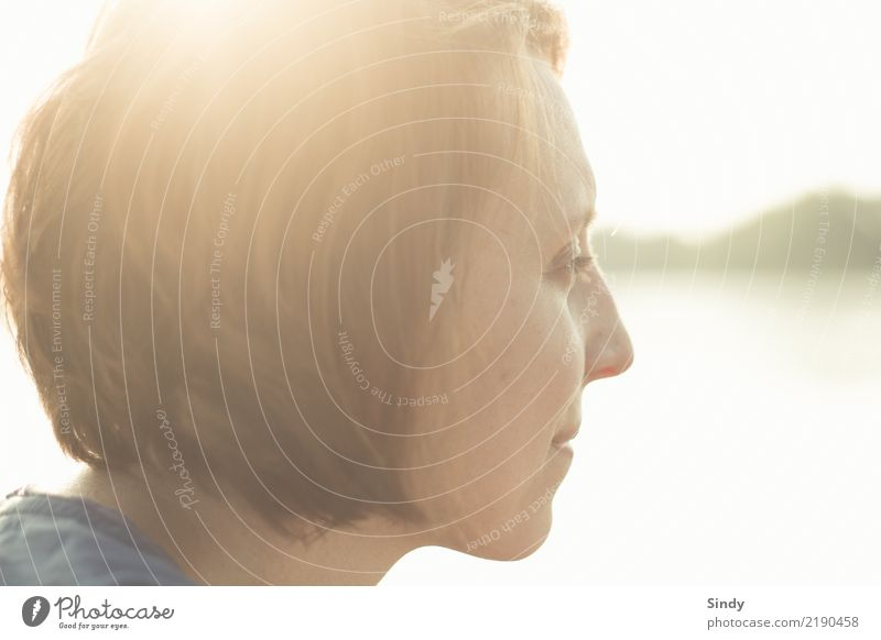backlight Feminine Young woman Youth (Young adults) Adults Face 1 Human being 18 - 30 years 30 - 45 years Brunette Short-haired Breathe Dream Far-off places