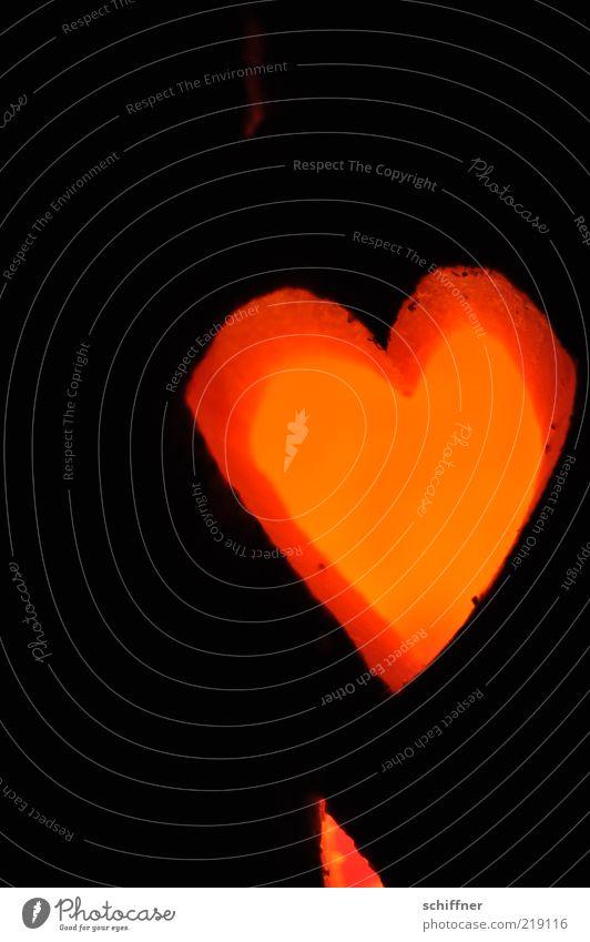 Red Love Black Dark Lighting Orange Heart Sign Illuminate Friendliness Lovesickness Hallowe'en Pumpkin Sincere Candlelight Light