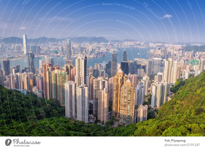 Hong Kong building city with day time Beautiful Vacation & Travel Tourism Ocean Mountain Office Economy Financial Industry Business Landscape Sky Tree Forest