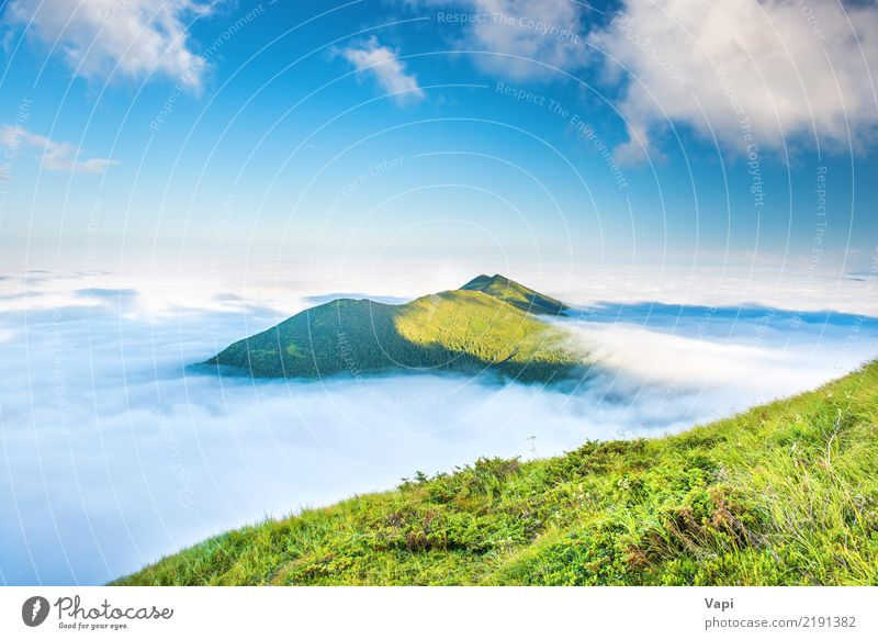 Green mountains in the clouds Sky Nature Vacation & Travel Blue Summer Beautiful White Sun Landscape Clouds Far-off places Mountain Yellow Natural Grass