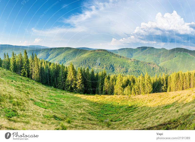 Panorama with green mountains Beautiful Vacation & Travel Tourism Summer Mountain Environment Nature Landscape Plant Sky Clouds Horizon Sunrise Sunset Sunlight