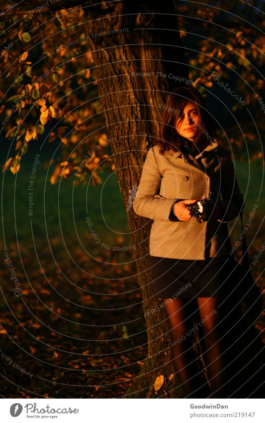 Woman Human being Nature Youth (Young adults) Beautiful Tree Cold Meadow Autumn Feminine Emotions Moody Wait Adults Environment