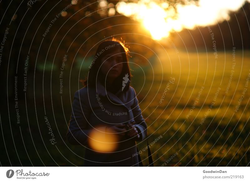 Lights. SECOND Human being Feminine Young woman Youth (Young adults) Woman Adults Life 1 Environment Nature Tree Grass Meadow Breathe Wait Cold Emotions Moody