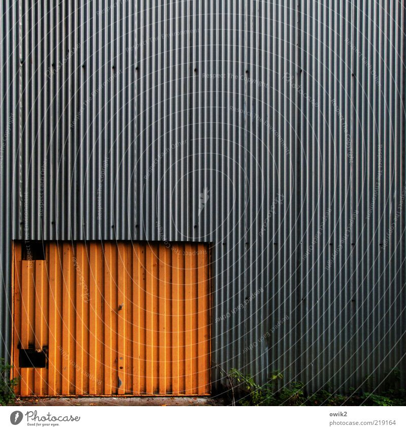 Old Plant Colour Gray Building Orange Metal Architecture Door Design Closed Gloomy Bushes Simple Gate Manmade structures