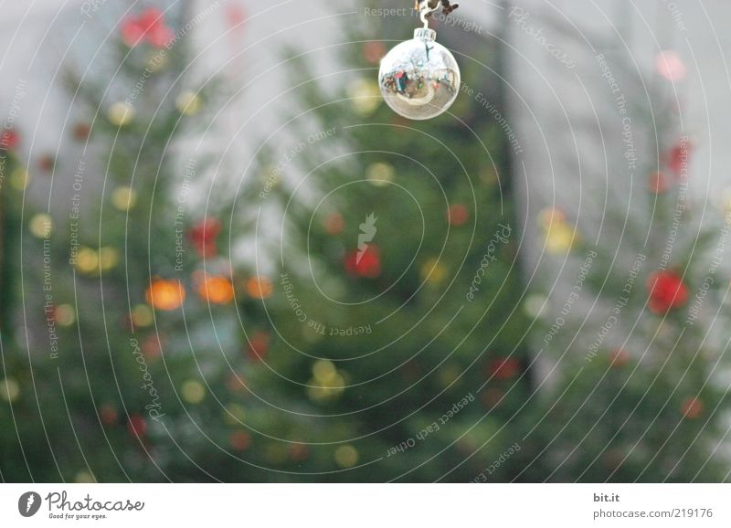 Christmas & Advent Tree Winter Moody Glittering Glass Round Decoration Uniqueness Kitsch Christmas tree Sphere Fir tree Whimsical Silver