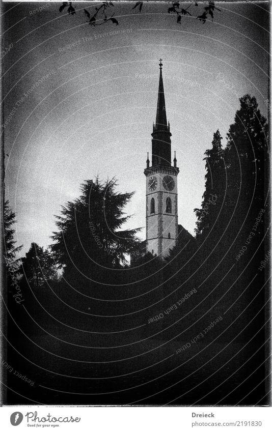 White Tree Leaf Black Park Church Tower Switzerland Small Town
