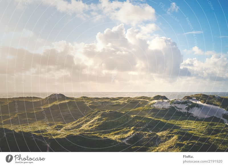 Danish North Sea coast Vacation & Travel Tourism Far-off places Freedom Summer vacation Environment Nature Landscape Elements Sand Air Sky Clouds Sunrise Sunset