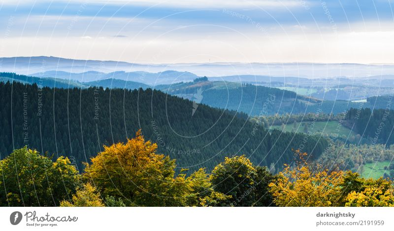 Panorama of Siegerland and Wittgenstein from the Ginsberg Heath Vacation & Travel Trip Summer Mountain Hiking Nature Landscape Plant Horizon Autumn Weather