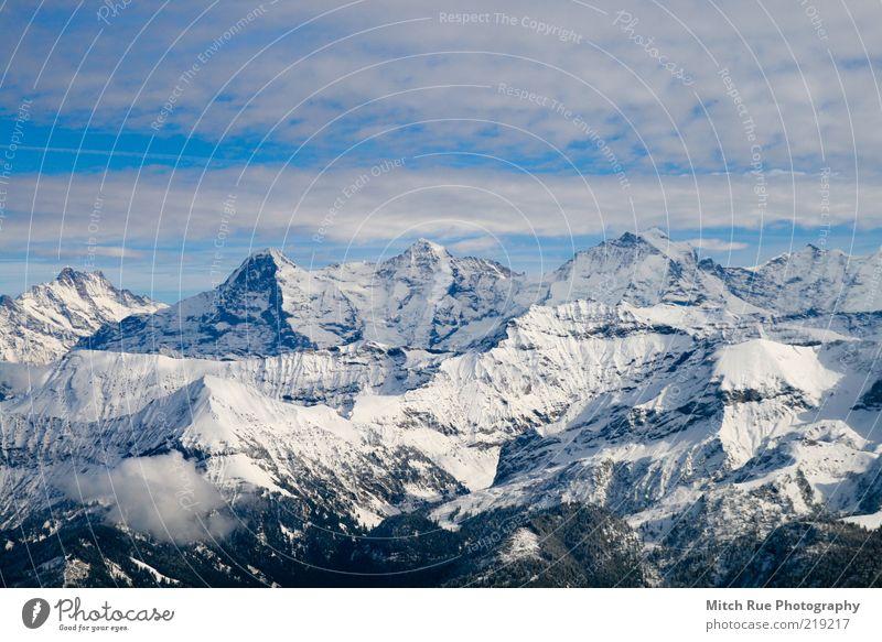 Winter Snow Mountain Freedom Tall Snowscape Mountain range Mountain ridge Massive Nature Monk (mountain) Jungfrau Clouds in the sky Eiger Recreation area