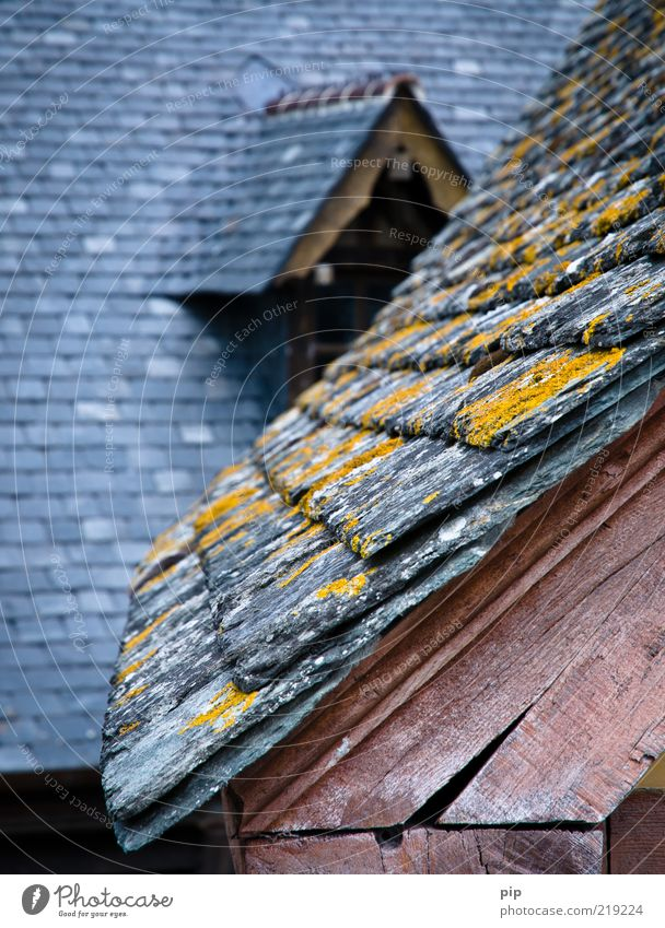 Old House (Residential Structure) Above Wood Gray Pink Tall Roof Protection Castle Moss Crack & Rip & Tear Roof beams Lichen Slate