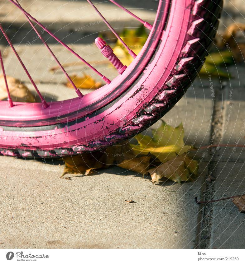 Leaf Autumn Lanes & trails Pink Concrete Change Mobility Tire tread Autumn leaves Spokes Multicoloured Wheel rim Valve Sprayed Bicycle tyre