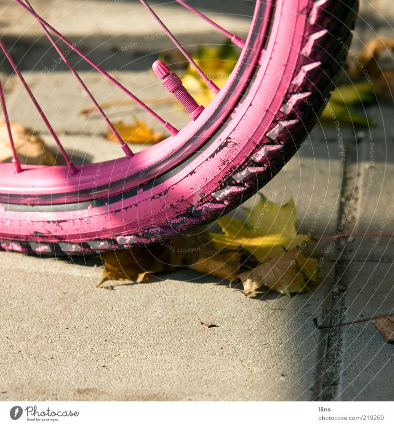 pink even Lanes & trails Concrete Pink Mobility Change Bicycle tyre Valve Tire tread Spokes Leaf Autumn Autumn leaves Colour photo Multicoloured Exterior shot