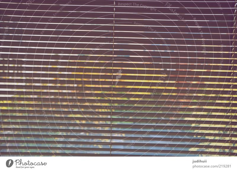 Window Glass Background picture Stripe Living or residing Striped Window pane Section of image Unclear Hidden Venetian blinds Roller shutter View from a window