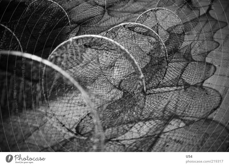 Network Harbour Dangerous Black & white photo Exterior shot Contrast Shallow depth of field Empty Long Round Fishery Fishing net Deserted Detail Shadow