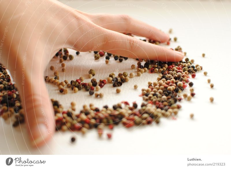 Hand White Fingers Cleaning Herbs and spices Many Multicoloured Pepper Human being Blur Wipe