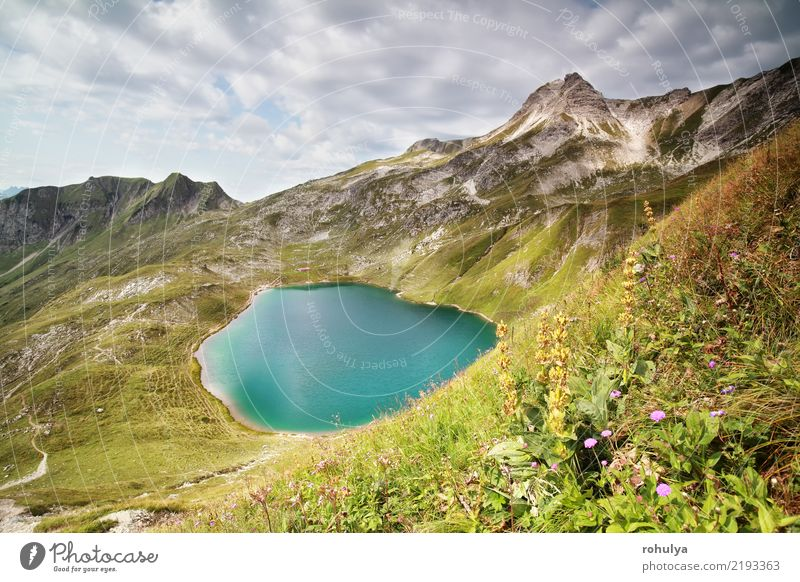 turquoise alpine lake on sunny day in Allgaeu Alps Vacation & Travel Adventure Mountain Hiking Landscape Sky Clouds Beautiful weather Flower Grass Blossom
