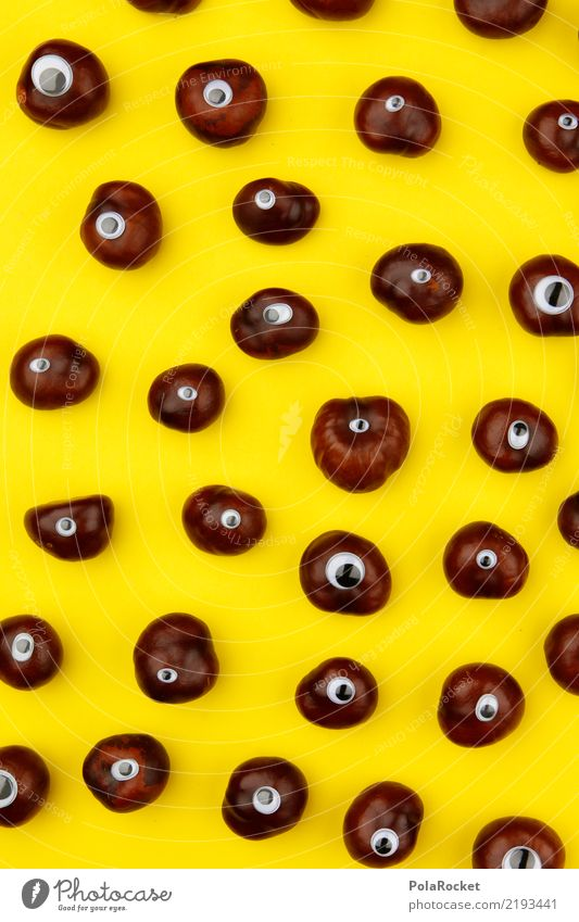 #AS# Brown Danger Art Kitsch Chestnut tree Autumn Autumnal Autumn leaves Autumnal colours Early fall Yellow Many Eyes One-eyed Cute Colour photo Multicoloured