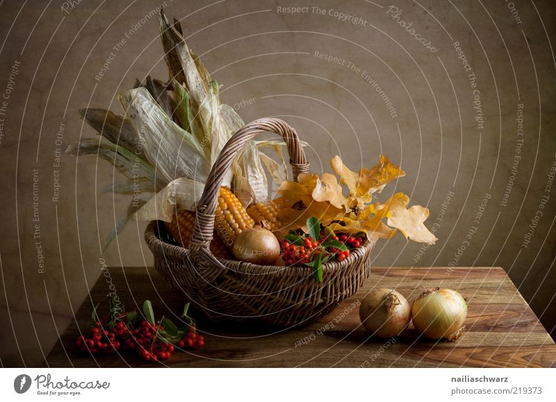 Autumn Still Life Food Vegetable Grain Maize Corn cob Berries Onion Nutrition Organic produce Vegetarian diet Nature Leaf Maple leaf Basket Wicker basket