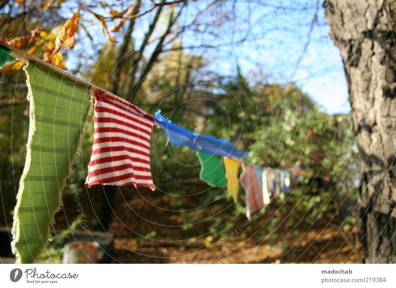 Beautiful Emotions Garden Moody Environment Esthetic Washing Laundry Multicoloured Dry Clothesline Washing day
