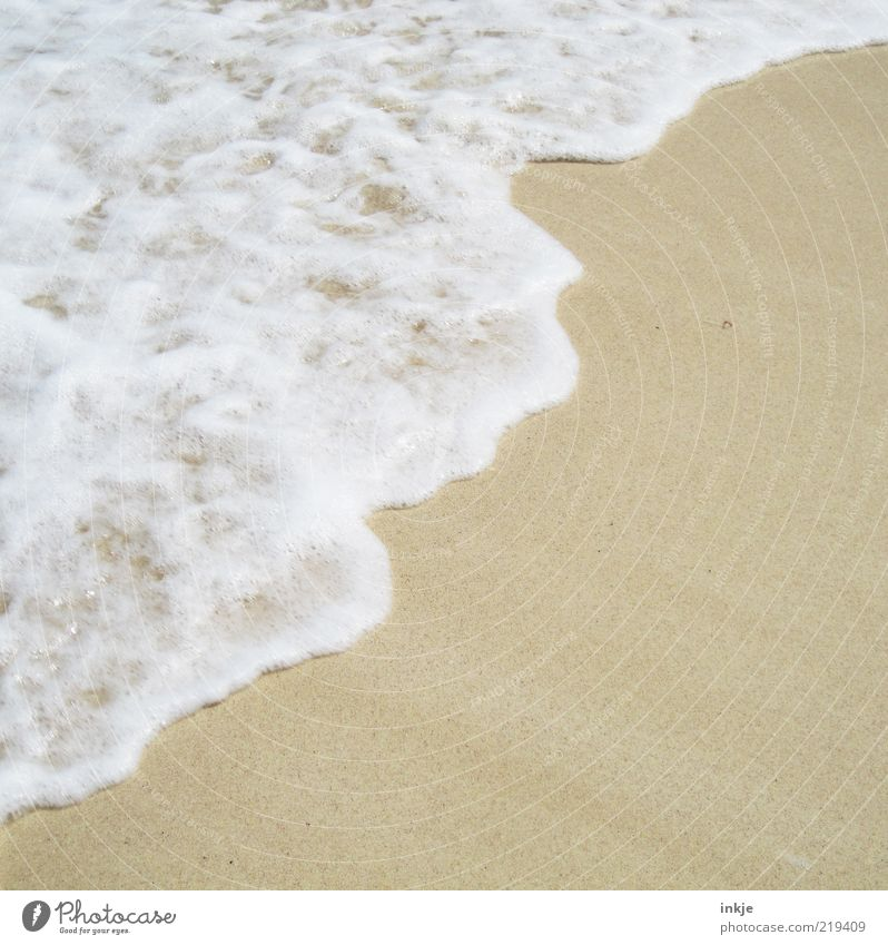 Sea foam at 30°C Summer Beach Ocean Waves Sand Water Beautiful weather Atlantic Ocean Foam Moody Contentment Idyll Copy Space White crest Sea water Surf