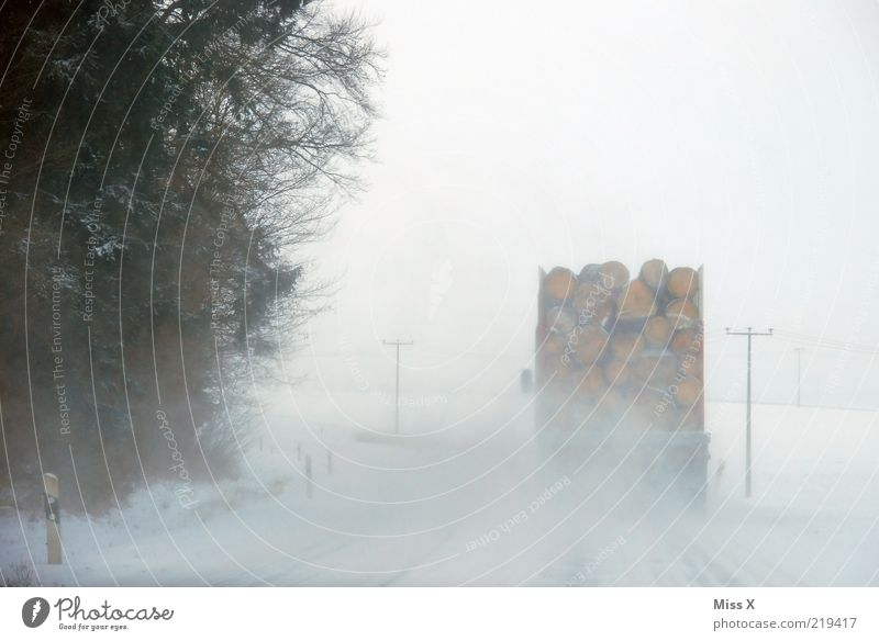 White Winter Street Snow Wood Snowfall Ice Road traffic Fog Transport Perspective Dangerous Frost Driving Logistics Truck
