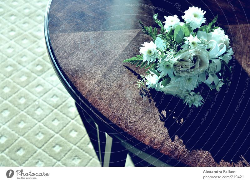 Therefore check who binds himself forever. Elegant Style Emotions Bouquet Table Ceremony Flower Relationship Connection Colour photo Subdued colour
