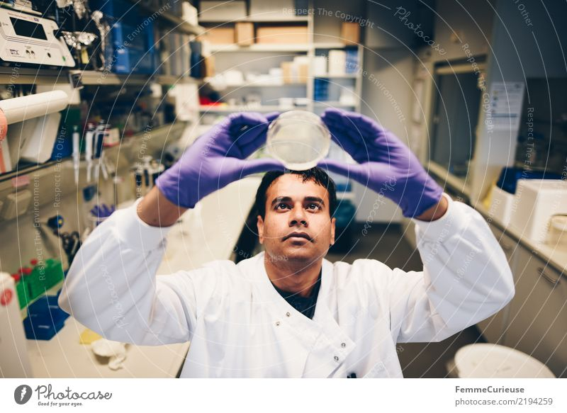 Human being Man Adults Masculine Future Concentrate Science & Research Advancement Gloves Chemistry Laboratory International Biology Competent Scientist