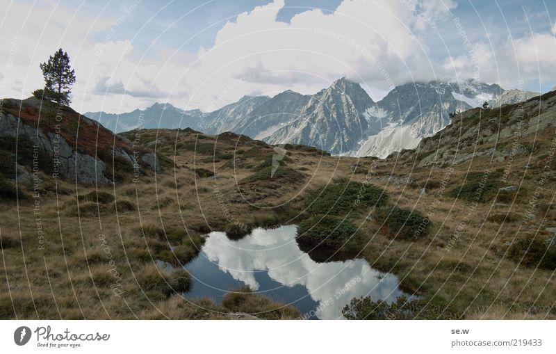 Tree Blue Calm Clouds Grass Mountain Freedom Brown Horizon Rock Romance Bushes Alps Infinity Hill Peak