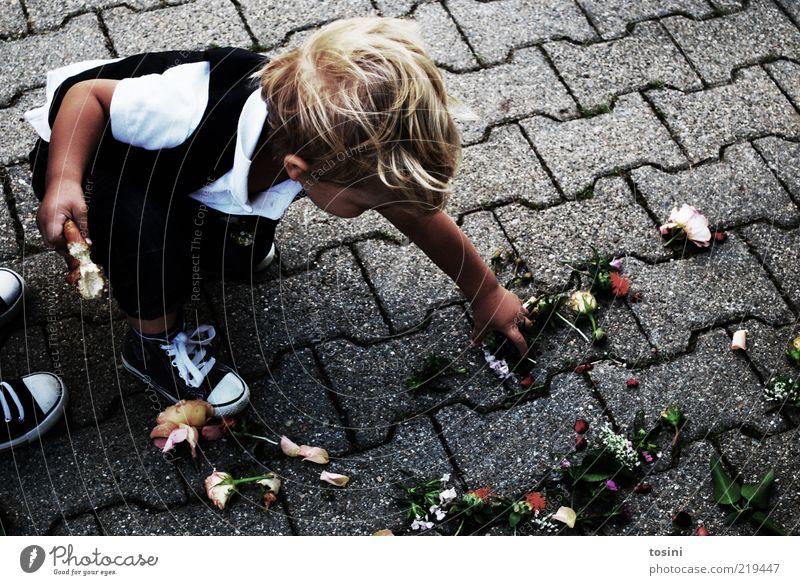 flower child Masculine Child Toddler Boy (child) 1 Human being 1 - 3 years Footwear Blonde Short-haired Crouch Flower Paving stone Wedding anniversary