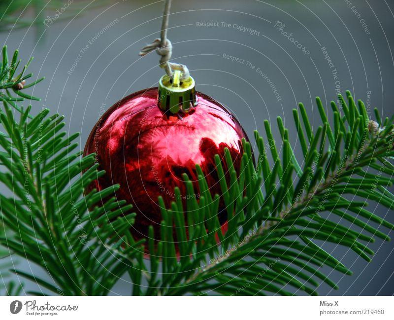 Christmas & Advent Red Glittering Glitter Ball Hang Christmas decoration Fir branch Sphere Fir needle Christmas tree decorations Glass ball