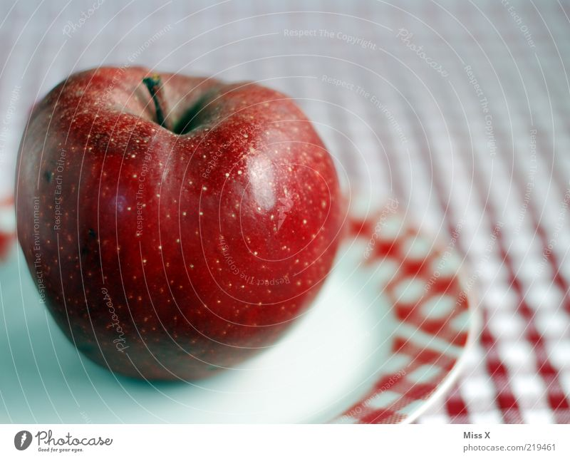 Red Nutrition Healthy Food Fruit Sweet Apple Stalk Delicious Mature Plate Picnic Diet Organic produce Checkered