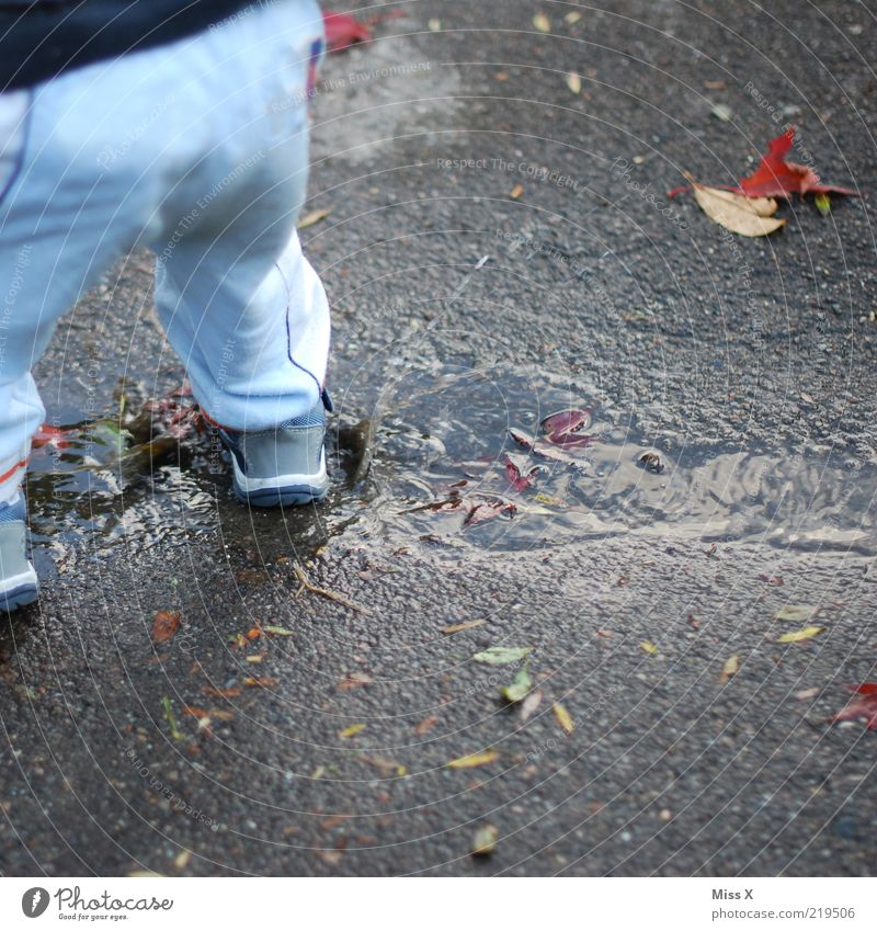 autumn fun Human being Child Toddler Infancy 1 1 - 3 years Cold Wet Joy Water Puddle Inject Hop Dirty Muding Playing Lanes & trails Drops of water Colour photo